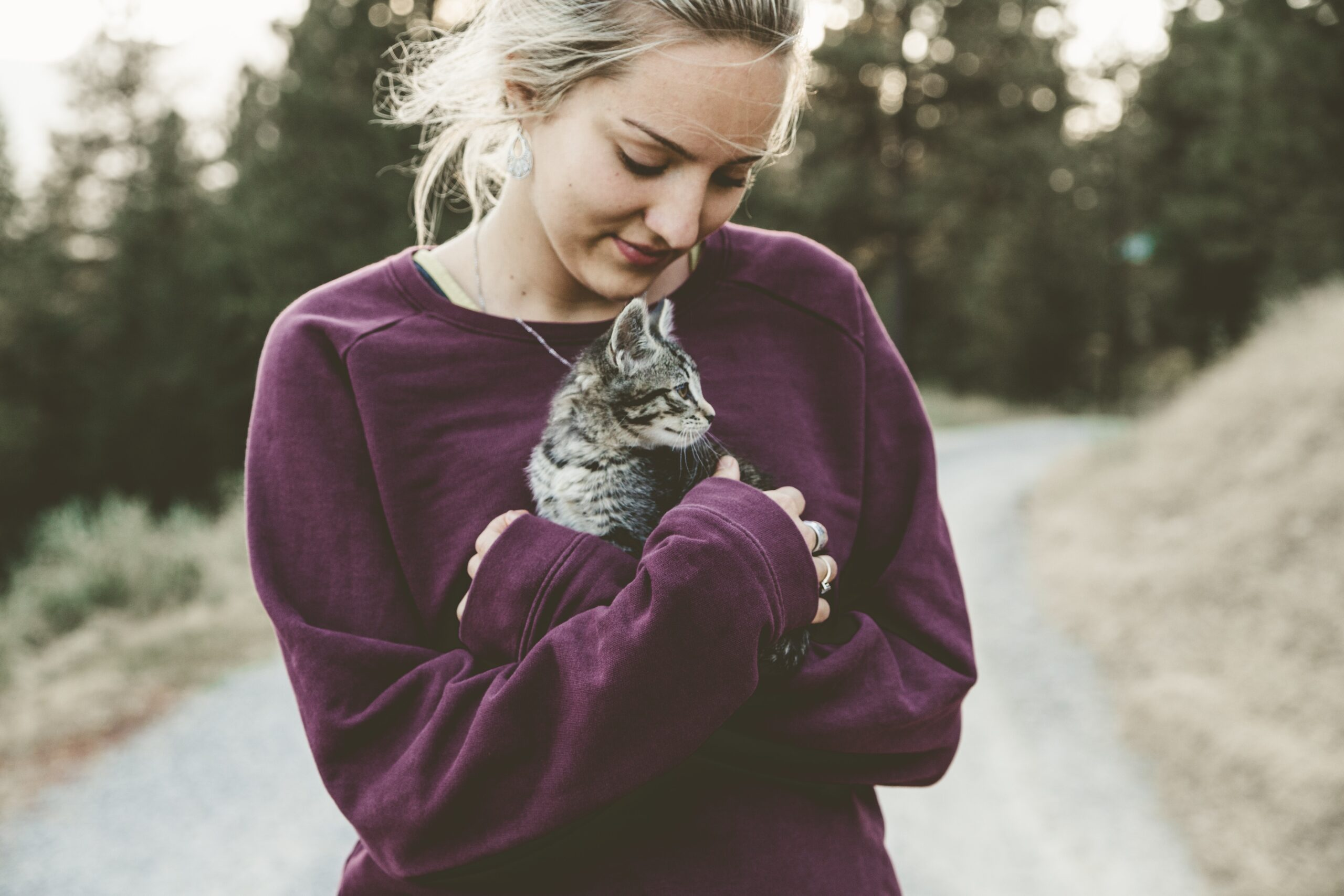 10 Ways to Celebrate National Cat Lover's Month